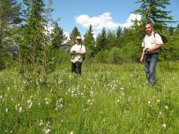 Henrik Kalivoda a Ľubomír Víťaz pri fotografovaní očkáňov hnedých (Coenonympha hero)