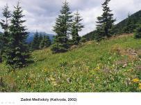 Historické zmeny v zložení spoločenstiev denných motýľov v Belianskych Tatrách