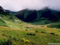 biotop (Belianske Tatry)
